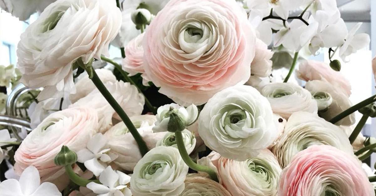 Photos: Art in Bloom