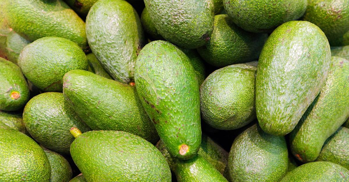 Avocados recalled over listeria concerns