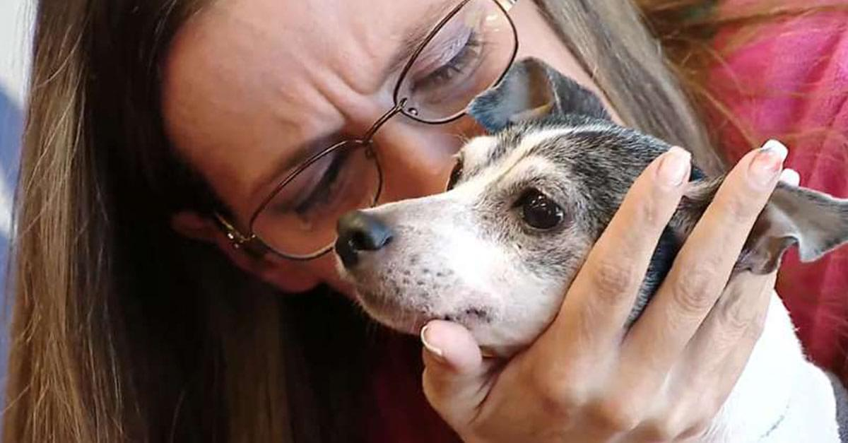 So Sweet! Dog Reunited with Owner 12 years Later