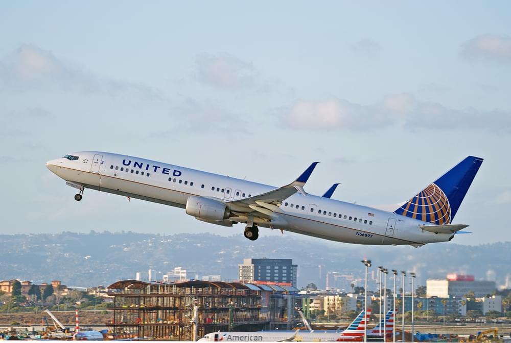 Dog Dies on United Airlines Flight