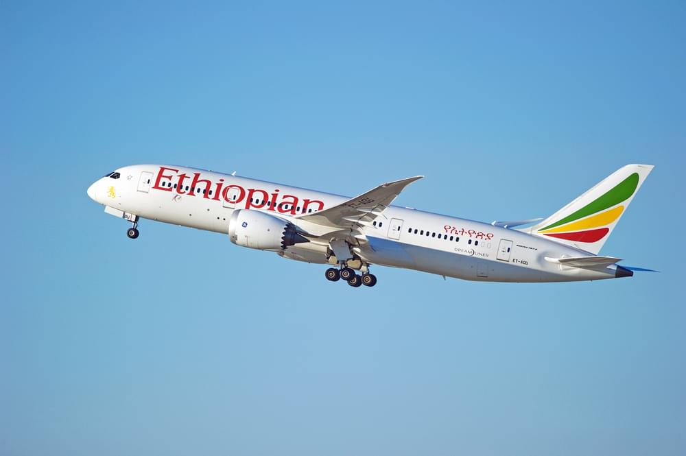 Which Airlines Are Still Using Boeing 737 Aircrafts After Ethiopian Airline Crash?