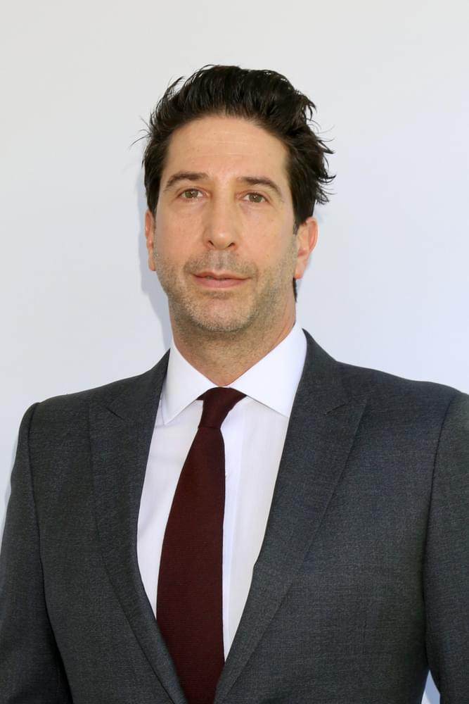 """David Schwimmer Responds to Him Suggesting An All-Black or All-Asian """"Friends"""" Reboot, After """"Living Single"""" Fans Tear Him Apart On Social Media"""