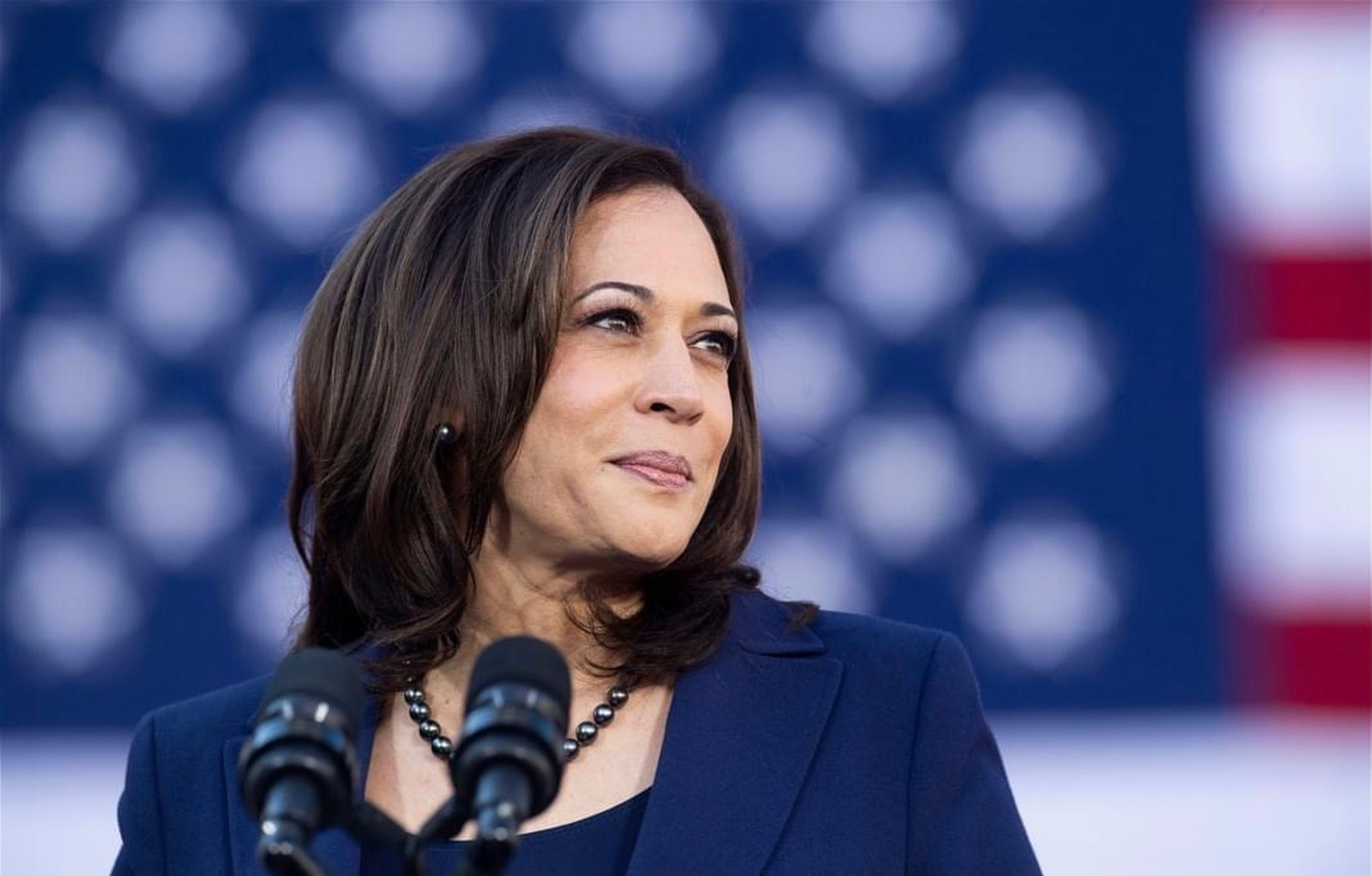 A Wanted Man Busted With Ammo & Guns Outside Of VP Kamala Harris's Home!