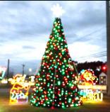 Christmas Tree Light Jubilee!