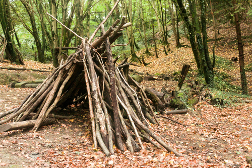 A Man Lives in the Woods For 10 Years to Get Away From His Wife