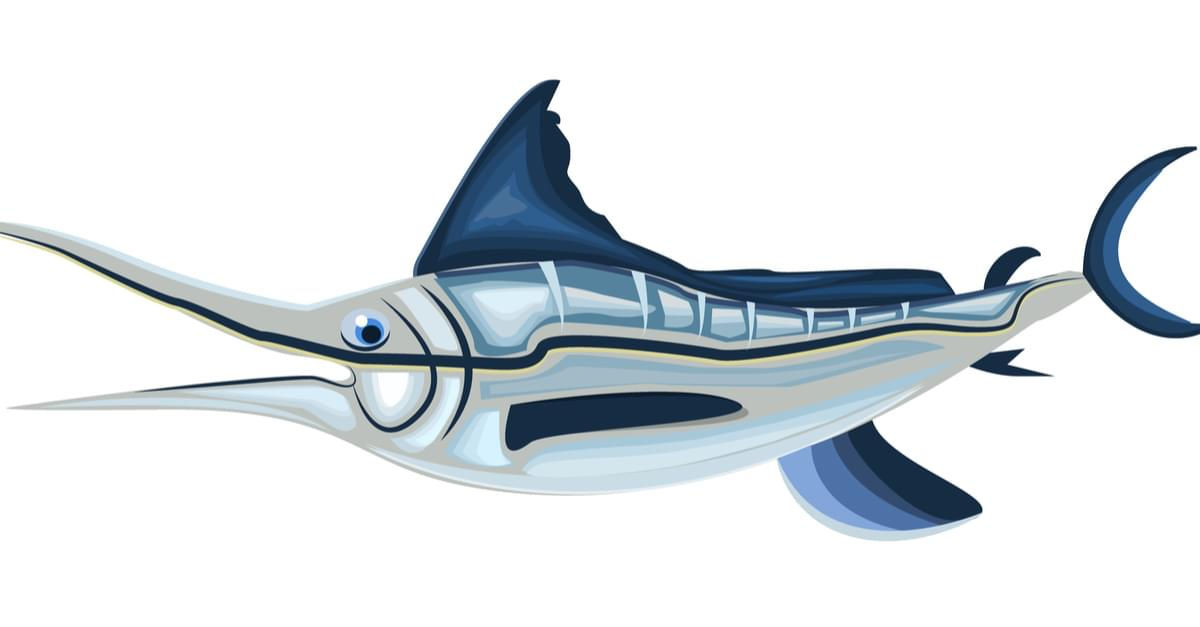 60th Big Rock Blue Marlin Tournament Kicks Off