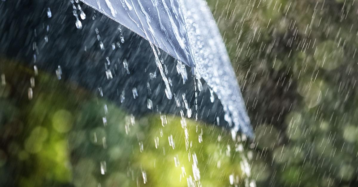 83% of Weekends in 2019 have been rainy in NC