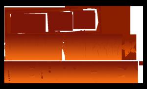 CountryMegaTicket_Logo2020_Vertical1