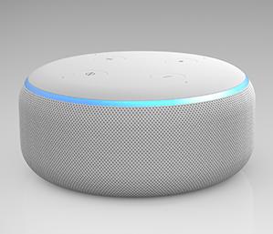NIT/NIT Replay: Amazon Echo Dot