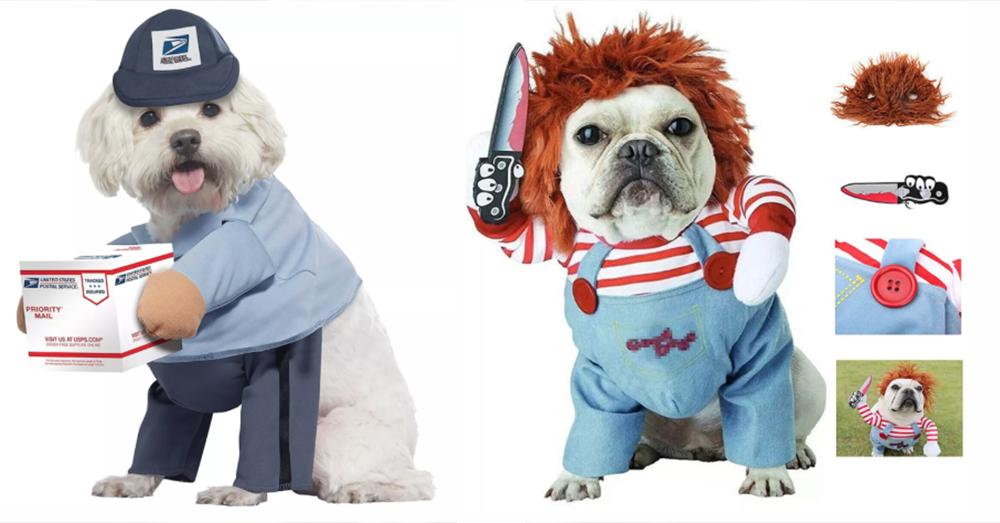 Halloween Pet Costumes You Need NOW!