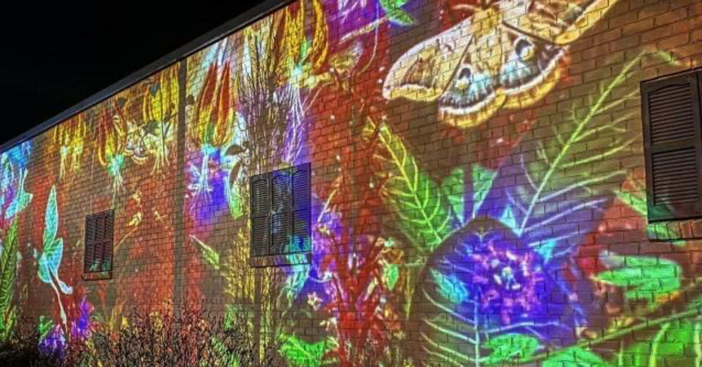 Virtual Reality Mural in Cary