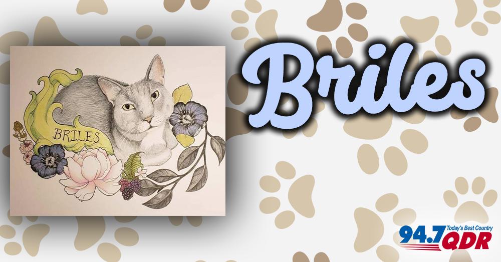 Fursday: Briles