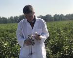 UMO Announces New Online Agribusiness Degree