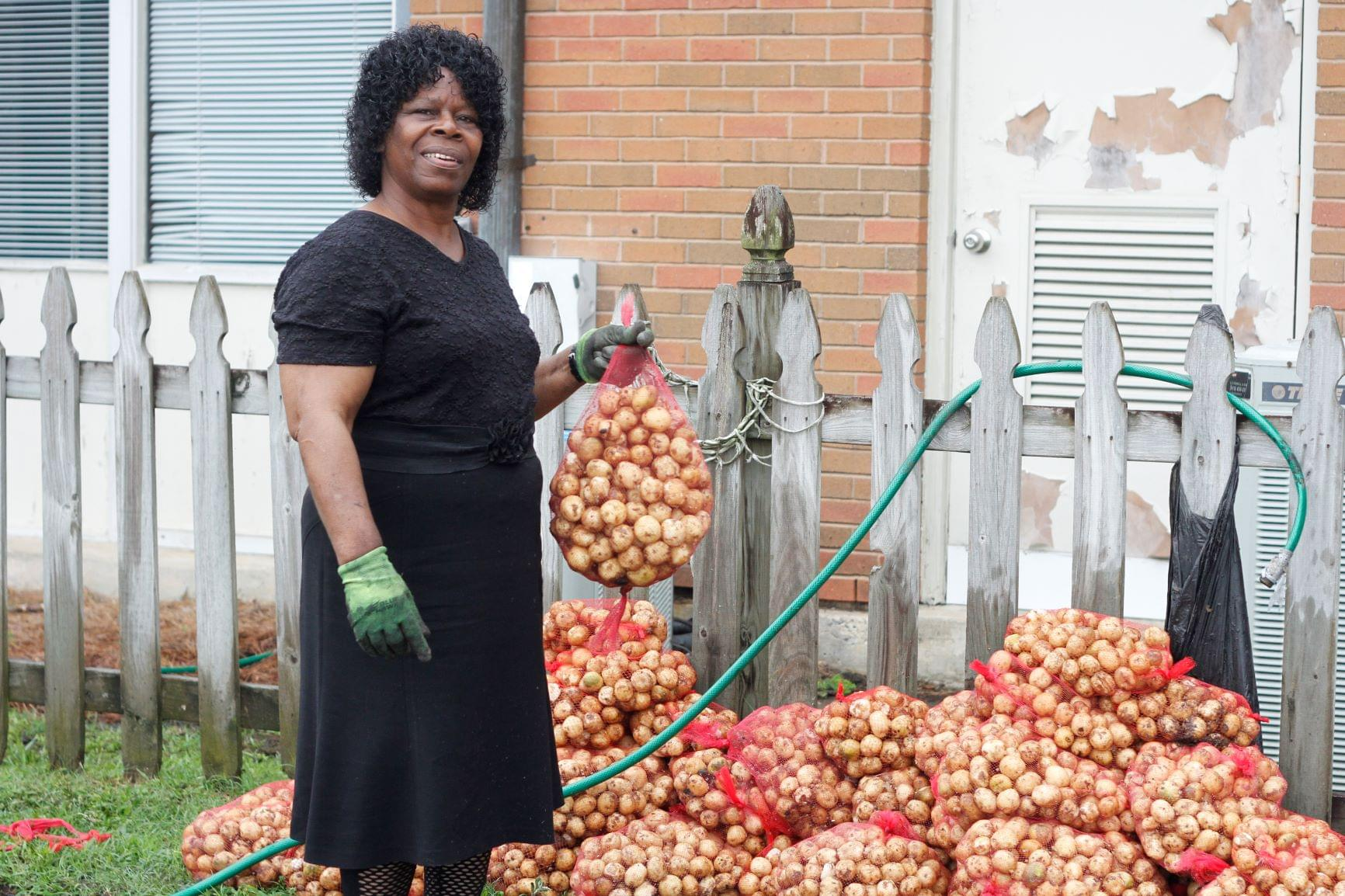Potato Delivery In Mount Olive (PHOTO GALLERY)