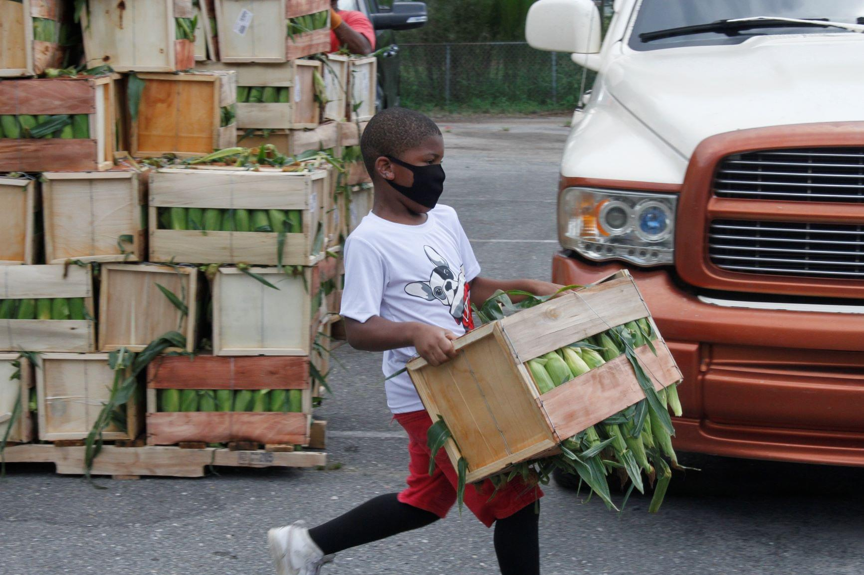 Fresh Corn Handed Out In Mount Olive (PHOTO GALLERY)