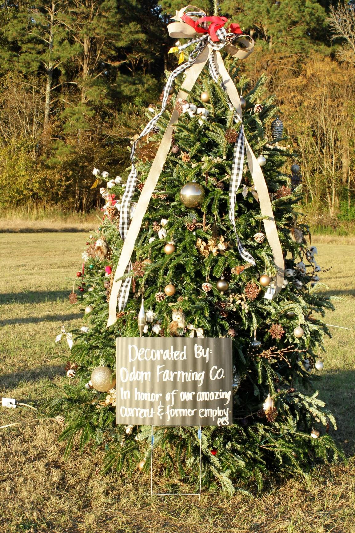 Final Weekend For Festival Of Trees