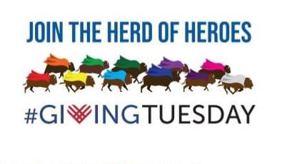 """WCC Foundation Looks For """"Herd Of Heroes"""" This Giving Tuesday"""