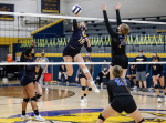 Volleyball: Goldsboro's Brown Named ECC Player Of The Year