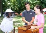 Virtual Beekeeping Classes Begin Next Week