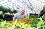 UMO To Hold Spring Plant Sale