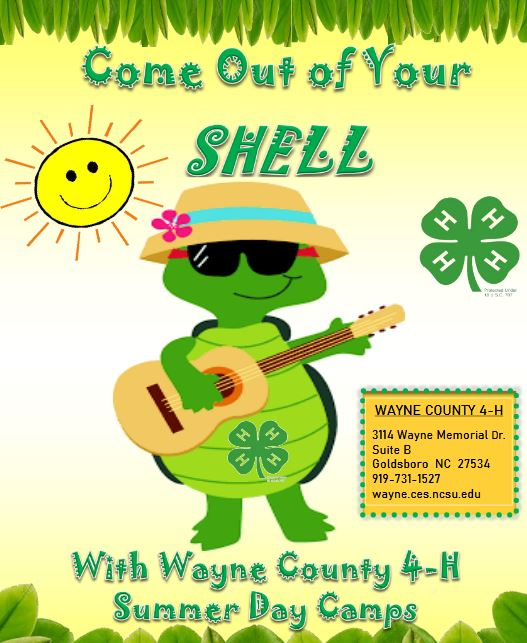Wayne County 4-H Summer Day Camps