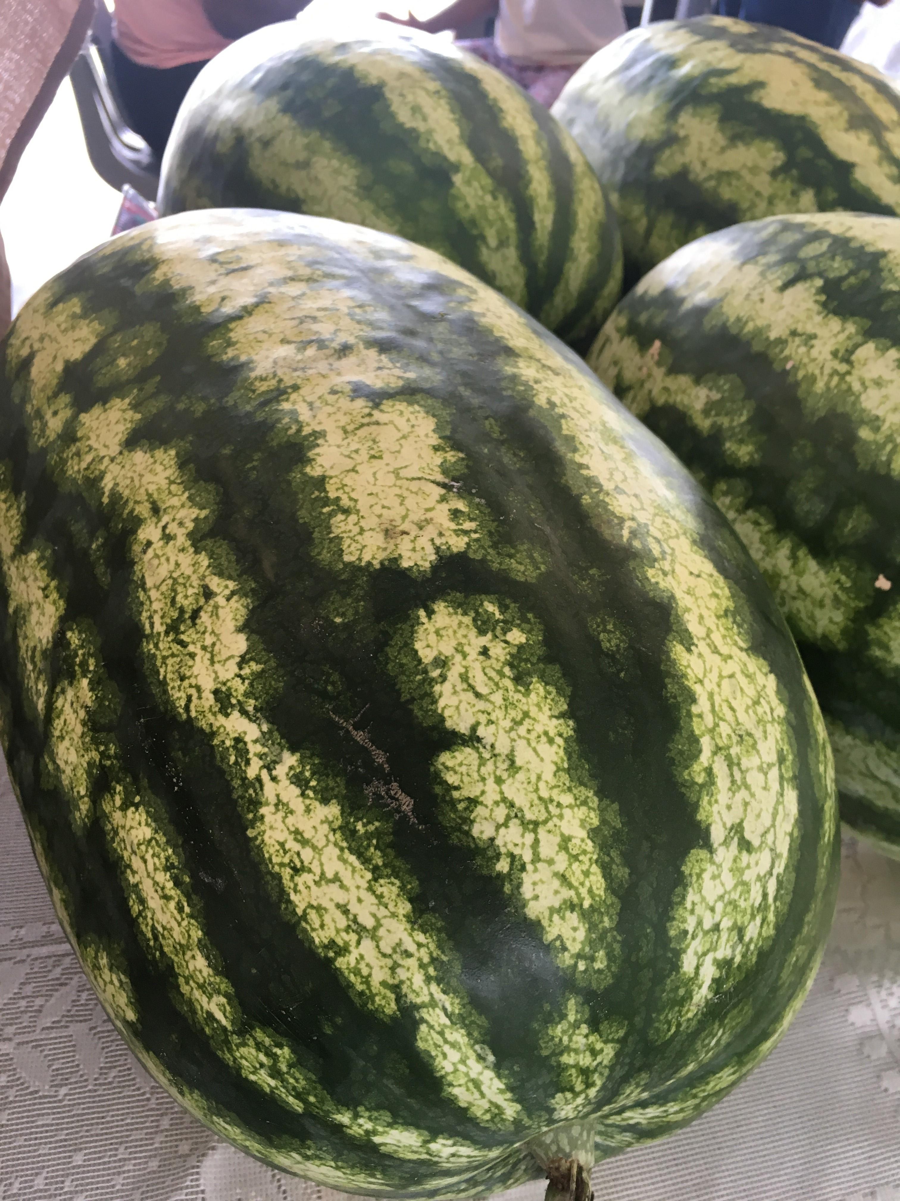 Peak Watermelon Season Is Here!