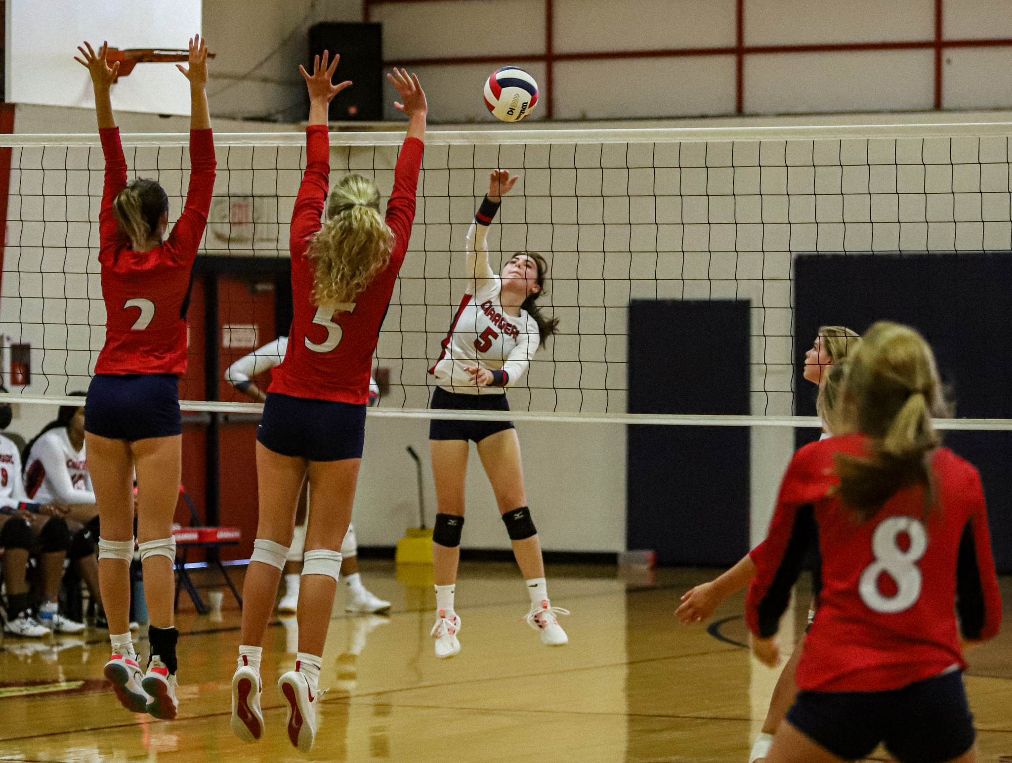 Volleyball: WCDS Goes Up Against Rocky Mount Academy (PHOTO GALLERY)