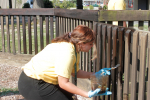 UMO Students Help Beautify Mount Olive (PHOTO GALLERY)