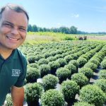 Mums The Word: UMO To Hold Fall Plant Sale