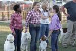 Friday Winners At The Wayne Regional Agricultural Fair