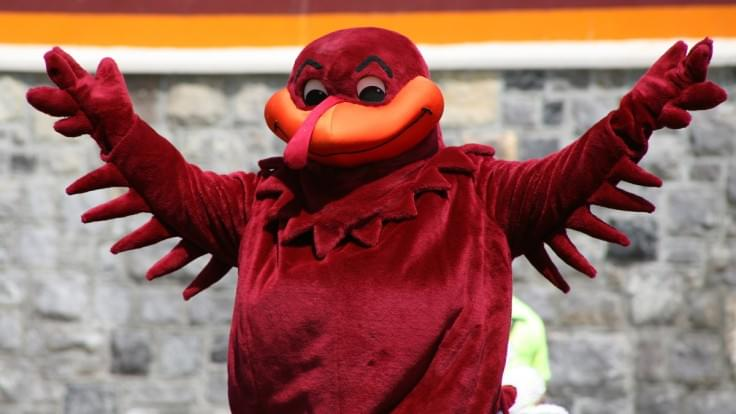 There is a Tech Lost Helpline for the Virginia Tech Fans That are Grieving [LISTEN/PARODY]