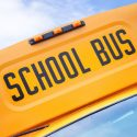 Kindergarten Student Hit And Killed While Waiting For School Bus In Plainfield