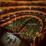 Plants Fill Seats at Barcelona Opera House Concert