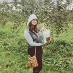 Apple Orchards You Can Visit This Year!