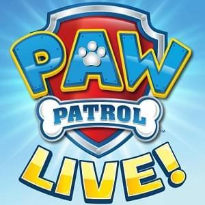 Paw Patrol 300 X 300