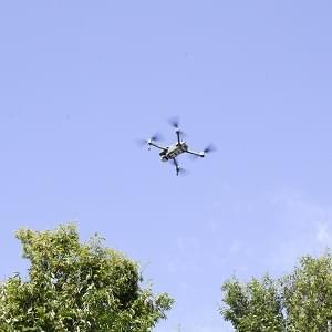 It's a Bird, It's a Plane… No, it's a Drone!