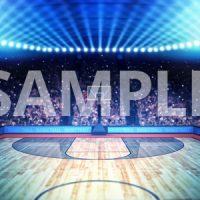 sample-sports1