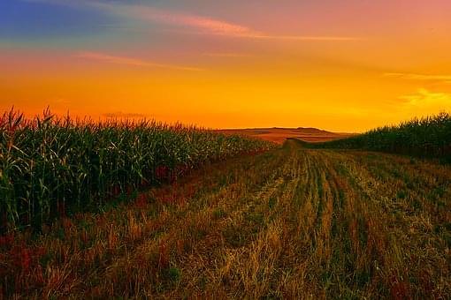 Farmers get their own NO-NO for November