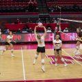 Volleyball vs Minnesota