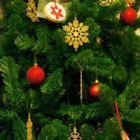 Christmas Tree Drop-off Sites