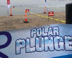 plunge logo