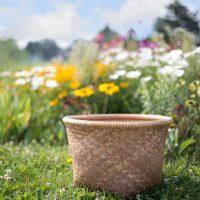 basket-554094_960_720