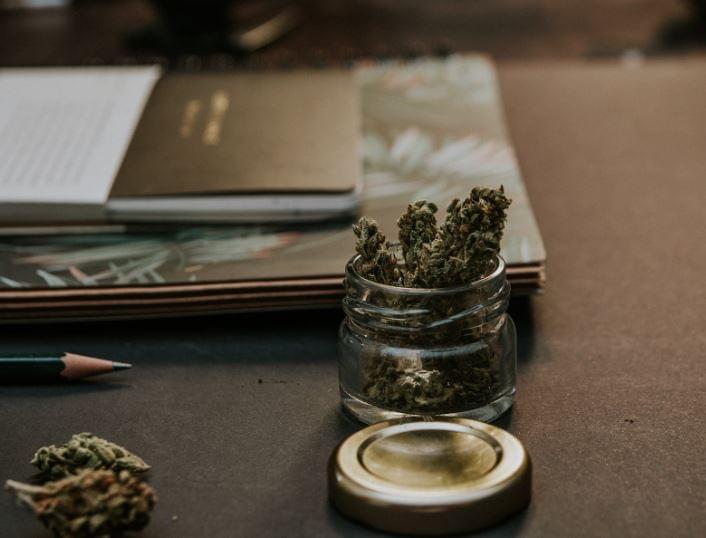 Private Nebraska University To Offer Cannabis Courses