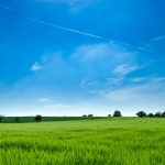 Nebraskans Express Mixed Views on the Impact of Immigration on Rural Nebraska