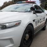 Thieves Use Stun Gun On Teenage Victim