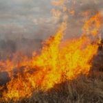 Expect Smoky Skies Over Parts Of Nebraska Due To Controlled Burn