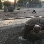 Grants approved for Thornton Park, Rotary Park projects