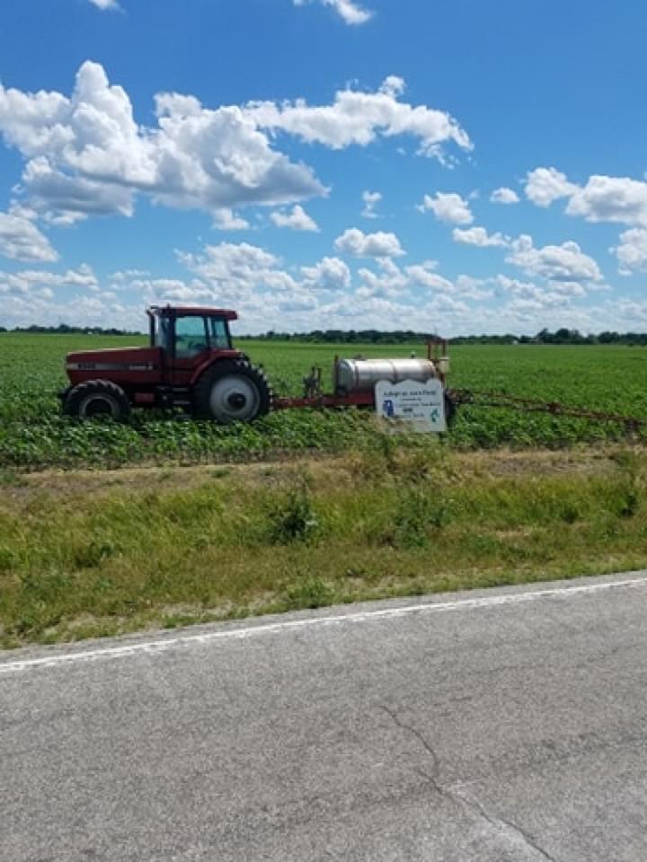 Spray Corn 20