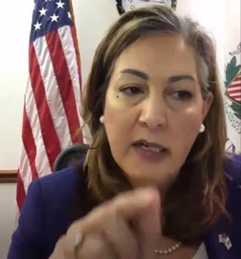 Linda Chapa LaVia Ill. House hearing 011121