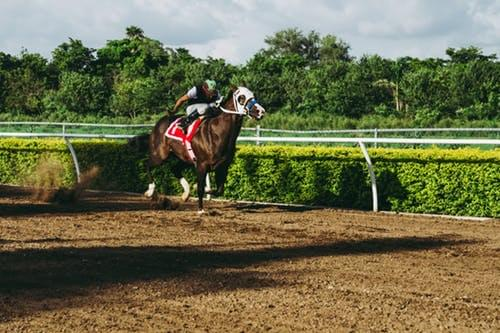 A Legal Challenge Predicted Over Historical Horse Racing In Nebraska